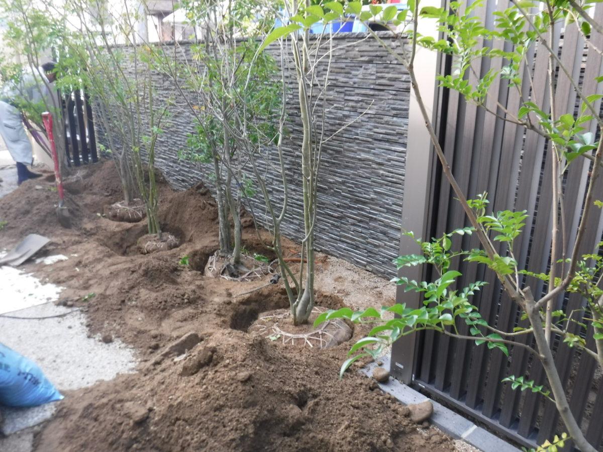 植栽植え込み-2
